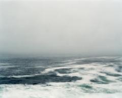 Lisa M. Robinson, Evolution (2010)