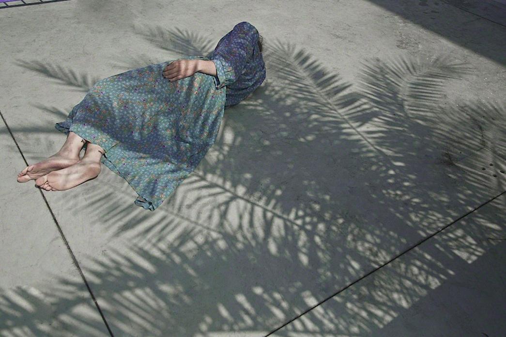 Cristina Coral, Secret Garden Palm (2015)
