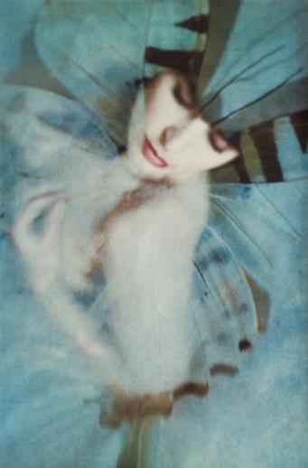 Wendi Schneider, Metamorphosis I (2015)