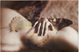 Wendi Schneider, Metamorphosis II (2015)