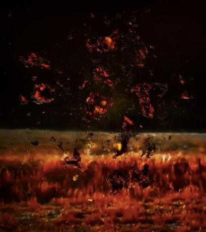 Stephanie Washburn, Telltale (Fire 1) (2013)