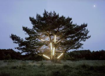 Zuijderwijk/Vergouwe, Dutch Moor with Moonlight, 2015