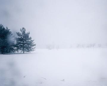 Maude Arsenault, Winter