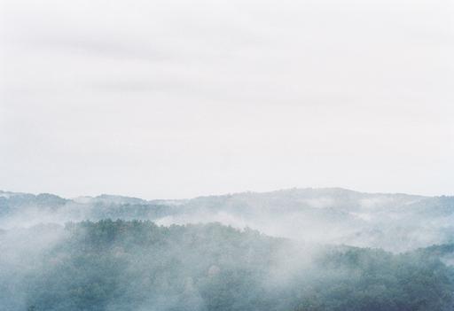 "Hannah Modigh, Series ""Hillbilly heroin, honey"", 2016"