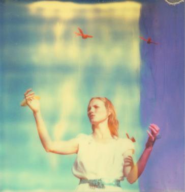 Haley and the Birds, 2013