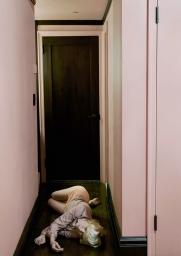 Do Not Disturb Series (2011)